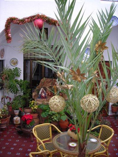 Palmera navideña en casa rural Rincón de las Nieves